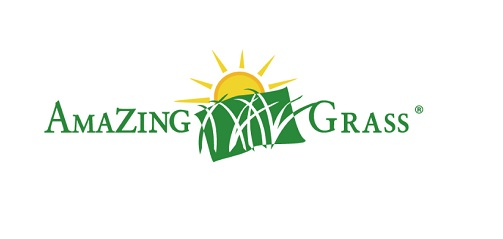 Amazing Grass Protein Powder Reviews